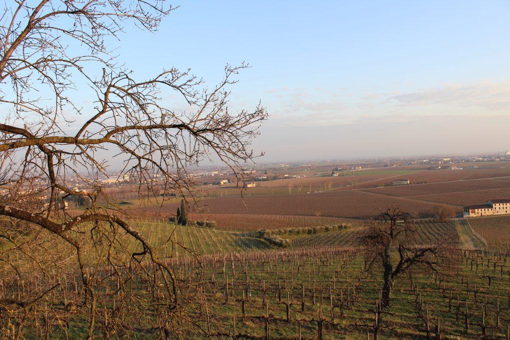 Agricoltura circolare a Borgoluce